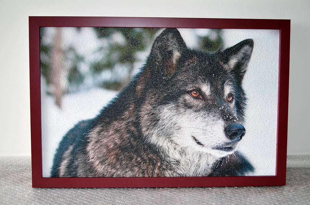 180W - Infrapanel Vlk kanadský