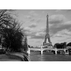infrapanel - Černobílá Paříž