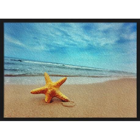 Topný obraz - Mořská hvězdice