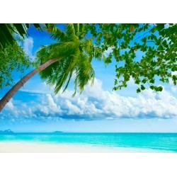 infrapanel - Palmový ráj