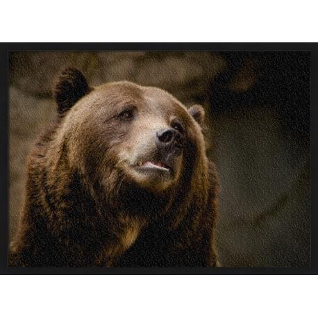 Topný obraz - Medvěd grizzly