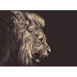 infrapanel - Černobílý lev