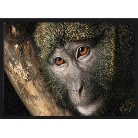 Topný obraz - Opice