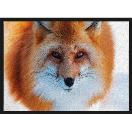 Topný obraz - Liška v zimě