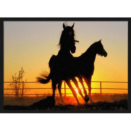 Topný obraz - Silueta koní