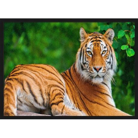 Topný obraz -Tygr sibiřský
