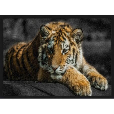 Topný obraz - Tygr bengálský