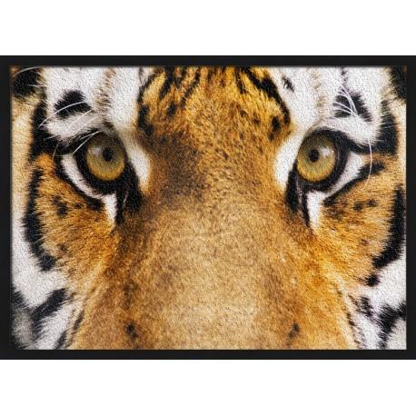 Topný obraz - Tygří pohled