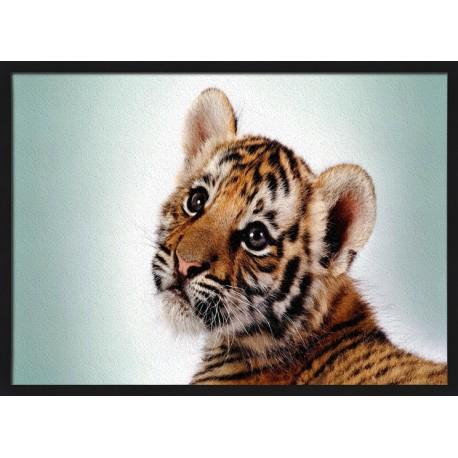 Topný obraz - Tygřík