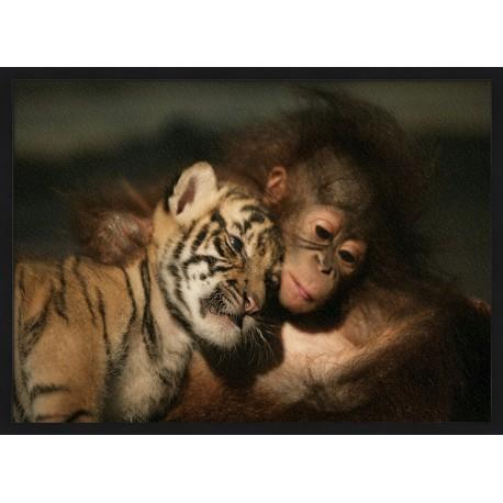 Topný obraz - Tygří a opičí mládě