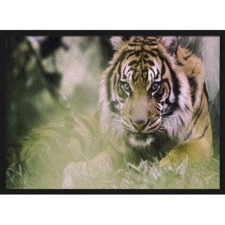 Topný obraz - Tygr indický