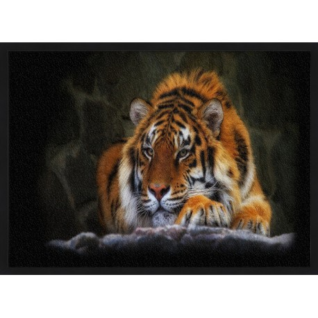 Topný obraz - Tygr sumaterský