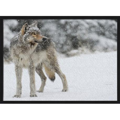 Topný obraz - Vlk