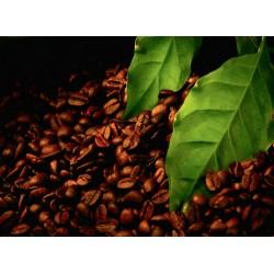 infrapanel - Kávová zrna