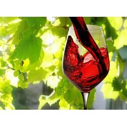 infrapanel - Červené víno