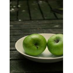 infrapanel - Zelená jablka