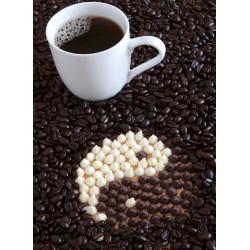 infrapanel - Kávová zrna a Yin Yang