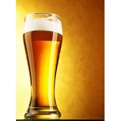 infrapanel - Pivo