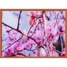 Topný obraz - Sakura