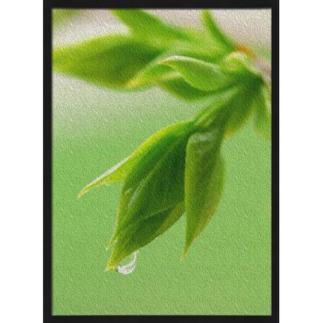 Topný obraz - Zelená rostlina