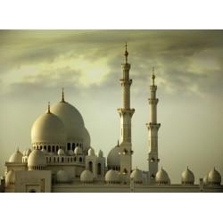 infrapanel - Spojené arabské emiráty