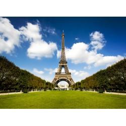 infrapanel - Letní park a Eiffelova věž