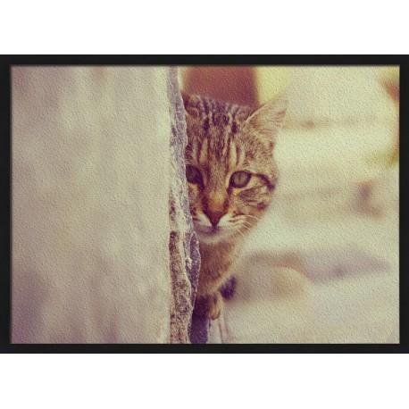 Topný obraz - Schovávající se kočka