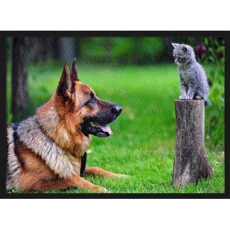 Topný obraz - Pes a kočka