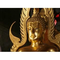 infrapanel - Zlatý Buddha