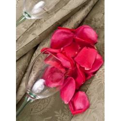 infrapanel - Plátky růže