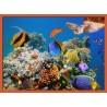 Topný obraz - Podmořský svět