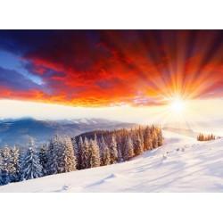 infrapanel - Zimní krajina