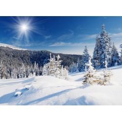 infrapanel - Zasněžená příroda