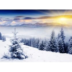 infrapanel - Zasněžené údolí