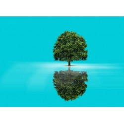 infrapanel - Strom života