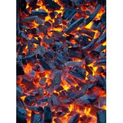 infrapanel - Hořící uhlíky