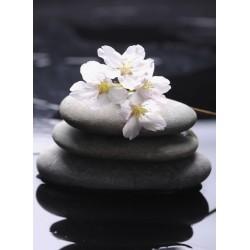 infrapanel - Masážní kameny s květy