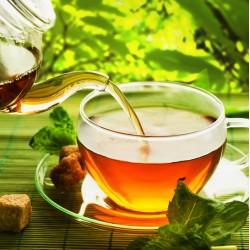 infrapanel - Mátový čaj