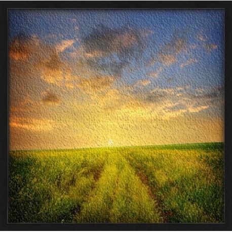 Topný obraz - Svítání