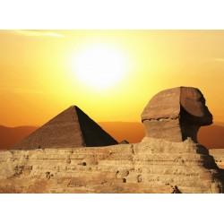 infrapanel - Egypt