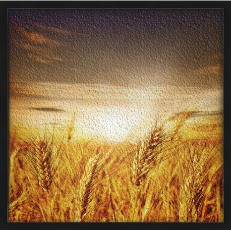 Topný obraz - Pole s obilím