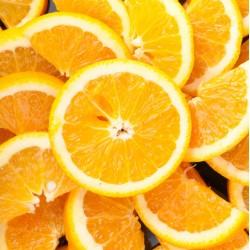 infrapanel - Pomeranče
