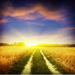 infrapanel - Cesta za nadějí