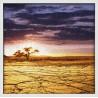Topný obraz - Pustina