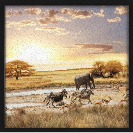 Topný obraz - Africké pláně