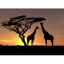 infrapanel - Silueta žiraf