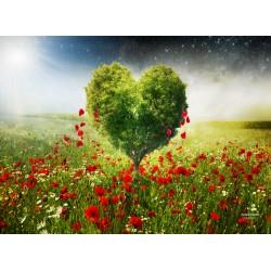 infrapanel - Srdce v poli