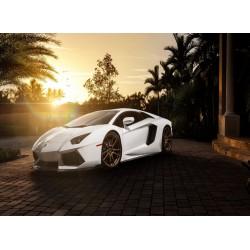 infrapanel - Luxusní auto