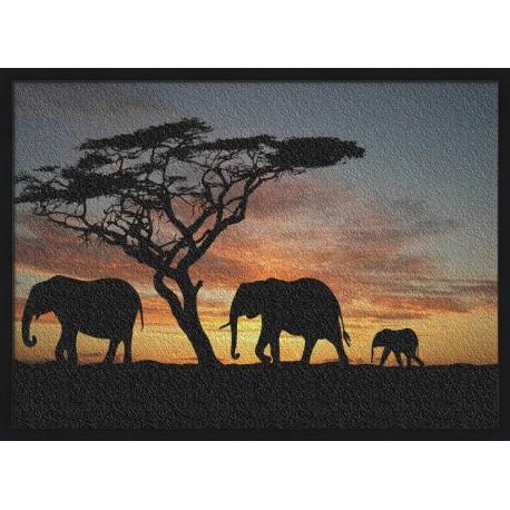 Topný obraz - Silueta slonů