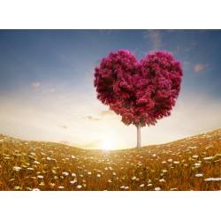 infrapanel - Stromové srdce